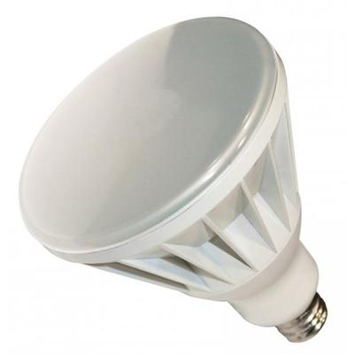 BR40 LED Lamp