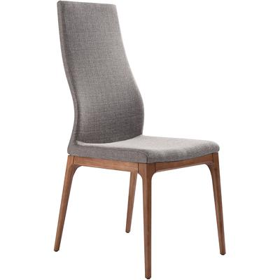 Set of 2 Montney Mid-Century Dining Side Chairs